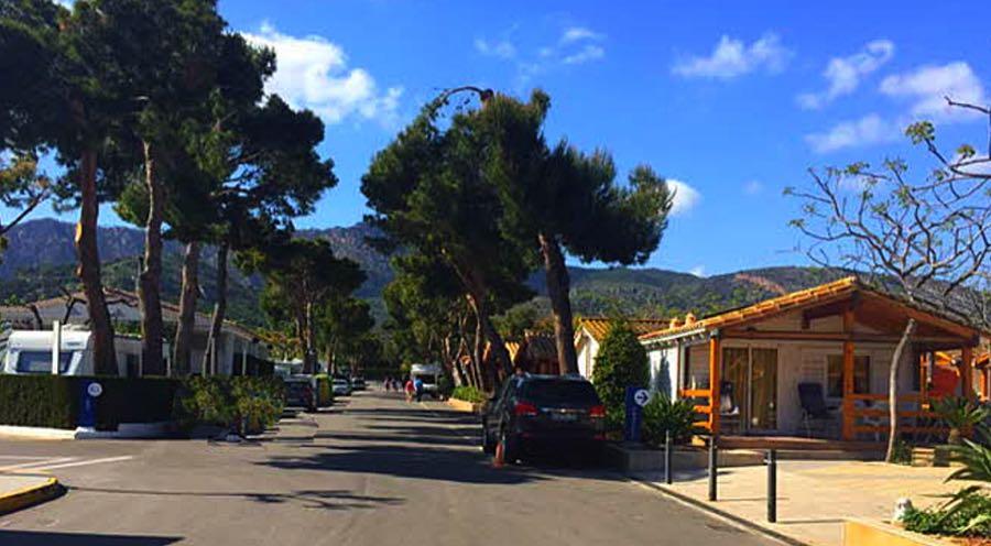 Bonterra Park Campsite