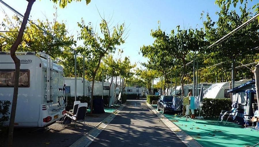 Bonterra Park campsite, Bennicasim