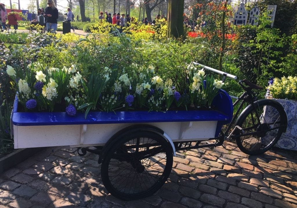 Wheelbarrow of flowers, Keukenhoff