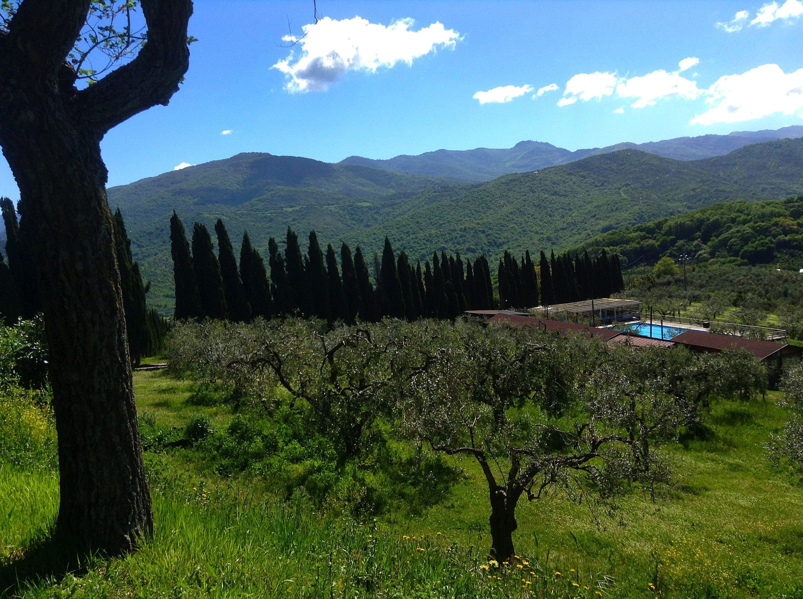 Views at Agriturismo La Cerra Tivoli