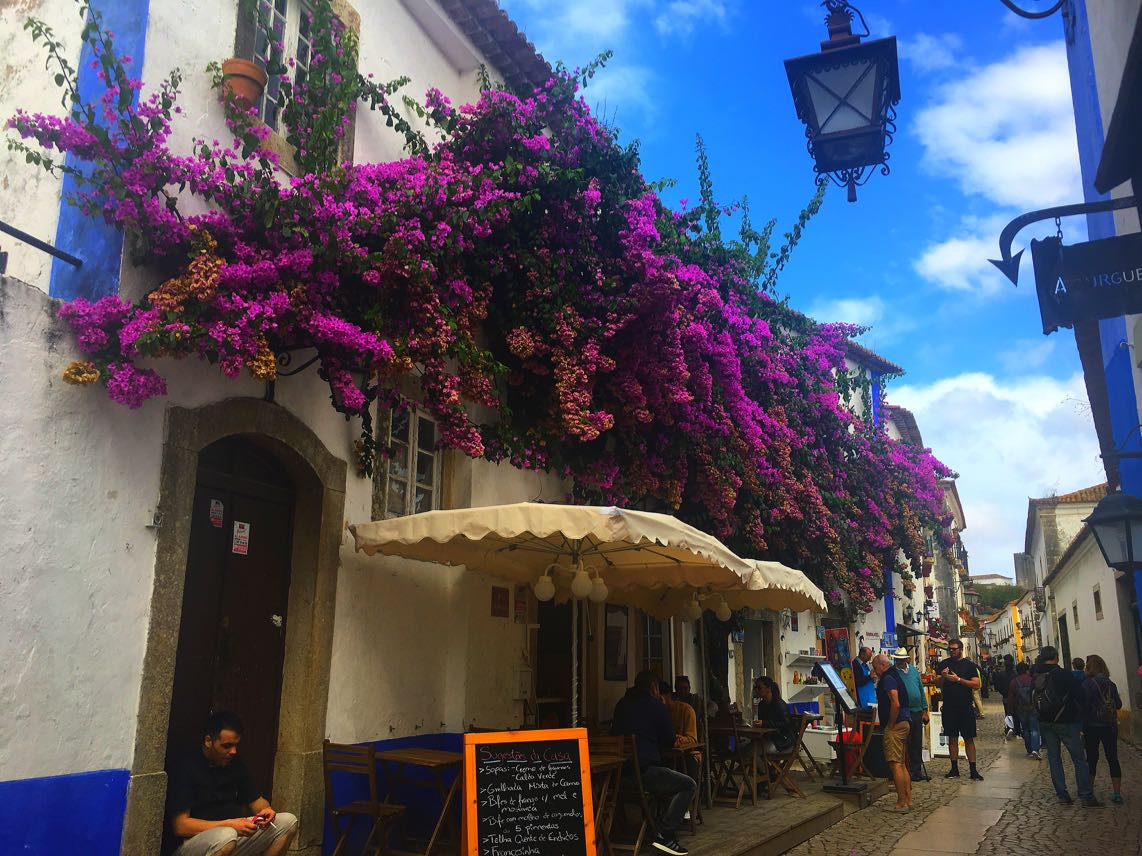Bougainvillaea in Obidos