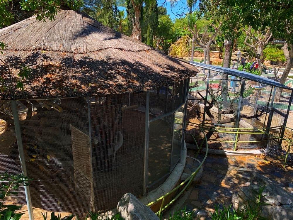 Camping-Bara-Avery-Animal-Area